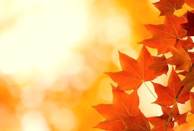 Блог - bake: Ех, ертеңгі күн, сен не әкелесің?