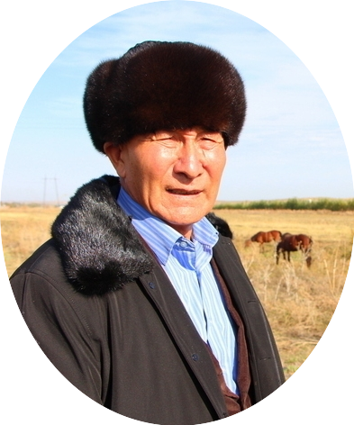 Блог - rakisheva: Қазақы жылқы қандай-ды...
