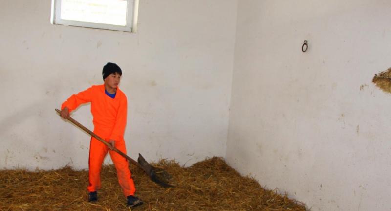 Блог - rakisheva: Шабандоздың бір күні