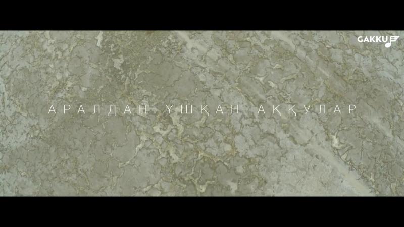 Ал сол кезде...: Диана Шарапованың Аралдан ұшқан аққулар әні