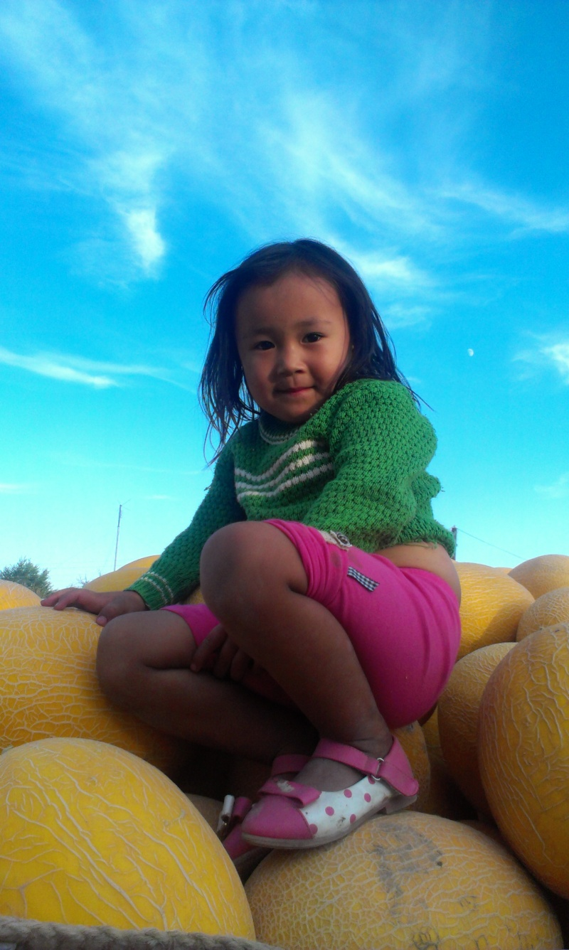 Блог - Arys_arlany: Ауылым - береке қонған мекенім